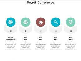 Payroll Compliance Ppt Powerpoint Presentation Examples Cpb
