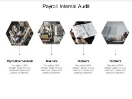 Payroll Internal Audit Ppt Powerpoint Presentation File Skills Cpb