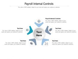 Payroll Internal Controls Ppt Powerpoint Presentation Portfolio Graphics Design Cpb