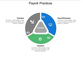 Payroll Practices Ppt Powerpoint Presentation Slides Guidelines Cpb