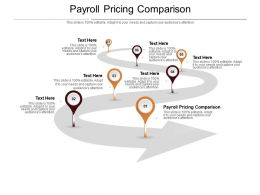 Payroll Pricing Comparison Ppt Powerpoint Presentation Icon Example File Cpb