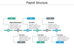 Payroll Structure Ppt Powerpoint Presentation Icon Background Designs Cpb