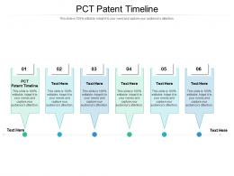 Pct Patent Timeline Ppt Powerpoint Presentation Infographics Graphic Tips Cpb