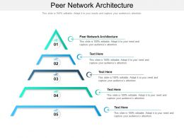 Peer Network Architecture Ppt Powerpoint Presentation Ideas Samples Cpb