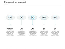 Penetration Internet Ppt Powerpoint Presentation Layout Cpb