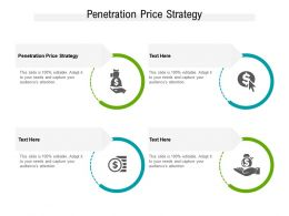 Penetration Price Strategy Ppt Powerpoint Presentation Professional Slide Cpb