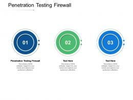 Penetration Testing Firewall Ppt Powerpoint Presentation Background Images Cpb