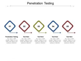 Penetration Testing Ppt Powerpoint Presentation Infographics Aids Cpb