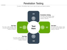 Penetration Testing Ppt Powerpoint Presentation Styles Templates Cpb