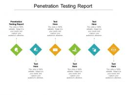 Penetration Testing Report Ppt Powerpoint Presentation Icon Graphics Cpb