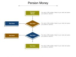 Pension Money Ppt Powerpoint Presentation Gallery Icons Cpb