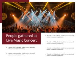 People Gathered At Live Music Concert