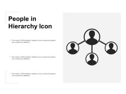 People In Hierarchy Icon