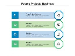 People Projects Business Ppt Powerpoint Presentation Deck Cpb