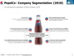Pepsico Company Segmentation 2018