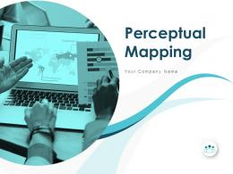 Perceptual Mapping Powerpoint Presentation Slides