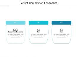 Perfect Competition Economics Ppt Powerpoint Presentation Icon Slide Portrait Cpb