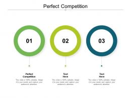 Perfect Competition Ppt Powerpoint Presentation Show Portrait Cpb