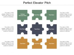 Perfect Elevator Pitch Ppt Powerpoint Presentation Model Background Designs Cpb