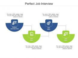 Perfect Job Interview Ppt Powerpoint Presentation Outline Graphics Example Cpb