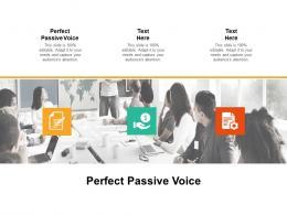 Perfect Passive Voice Ppt Powerpoint Presentation Infographic Template Slide Portrait Cpb
