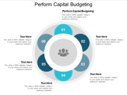 Perform Capital Budgeting Ppt Powerpoint Presentation Pictures Diagrams Cpb