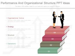 Performance And Organizational Structure Ppt Ideas