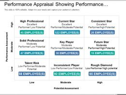 Performance Appraisal Showing Performance Assessment Vs Potential Assessment