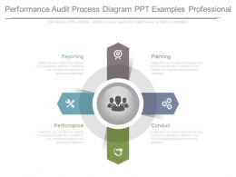Performance Audit Process Diagram Ppt Examples Professional