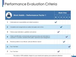 Performance Evaluation Criteria Ppt Portfolio Backgrounds