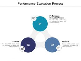 Performance Evaluation Process Ppt Powerpoint Presentation Model Cpb
