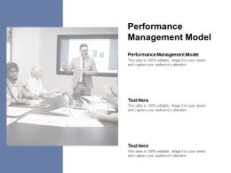 Performance Management Model Ppt Powerpoint Presentation Summary Cpb