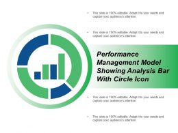performance management model showing analysis bar with circle icon