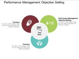 Performance Management Objective Setting Ppt Powerpoint Presentation Professional Cpb