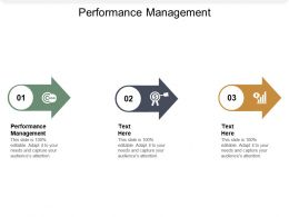 Performance Management Ppt Powerpoint Presentation Portfolio Themes Cpb