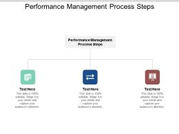 Performance Management Process Steps Ppt Powerpoint Presentation Summary Styles Cpb