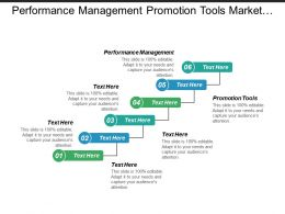 Performance Management Promotion Tools Market Segmentation Strategic Planning Cpb