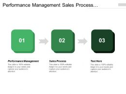 Performance Management Sales Process Relationship Strategy Field Play Development