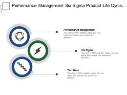 Performance Management Six Sigma Product Life Cycle Strategic Planning Cpb