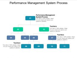 Performance Management System Process Ppt Powerpoint Presentation Slides Maker Cpb