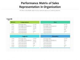 Performance Matrix Of Sales Representation In Organization