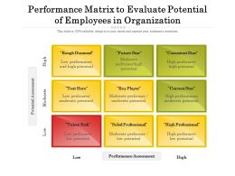 Performance Matrix To Evaluate Potential Of Employees In Organization