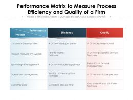 Performance Matrix To Measure Process Efficiency And Quality Of A Firm