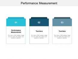 Performance Measurement Ppt Powerpoint Presentation Icon Professional Cpb