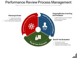 Performance Review Process Management Ppt Icon