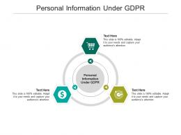 Personal Information Under GDPR Ppt Powerpoint Presentation Professional Designs Download Cpb