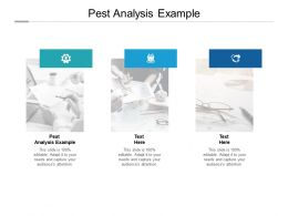 Pest Analysis Example Ppt Powerpoint Presentation Pictures Show Cpb