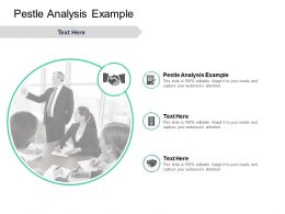 Pestle Analysis Example Ppt Powerpoint Presentation Gallery Layout Ideas Cpb