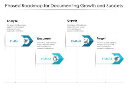 Phased Roadmap For Documenting Growth And Success
