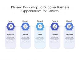 Phased Roadmap To Discover Business Opportunities For Growth